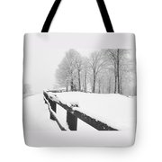 After The Winter Storm Tote Bag