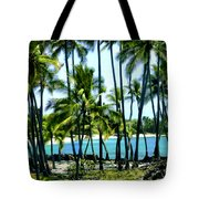 Afternoon At Kakaha Kai Tote Bag