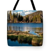 Afternoon At Sprague Lake Tote Bag