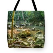 Afternoon In The Jungle Tote Bag