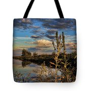 Late Afternoon In The Mead Wildlife Area Tote Bag