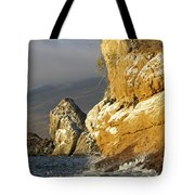 Afternoon Light On Isabella Island Tote Bag