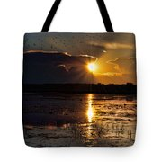 Late Afternoon Reflection Tote Bag