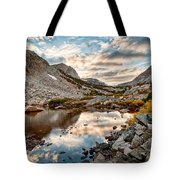 Afternoon Reflections Tote Bag by Cat Connor