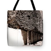 Afternoon Sun Bw Palm Springs Tote Bag