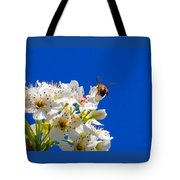 Against A Blue Sky Tote Bag