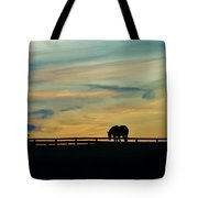 Against A Painted Sky Tote Bag