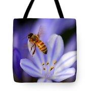 Agapanthus Africanus Tote Bag