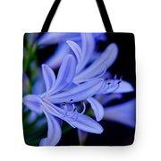 Agapanthus Blue Tote Bag