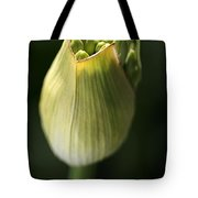 Agapanthus In The Daylight Tote Bag