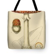 Agaricus Mushroom By Sowerby Tote Bag by Philip Ralley