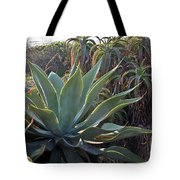 Agave At Sunset Tote Bag