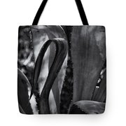 Agave Black And White Dsc08571 Tote Bag