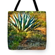 Agave In Secret Mountain Wilderness West Of Sedona Tote Bag