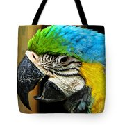 Age And Beauty Tote Bag