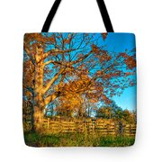 Aged Beauty 2 Tote Bag