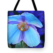 Aglow In Blue Wide View Tote Bag