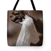 Agreeable Tiger Moth Tote Bag