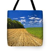 Agricultural Landscape - Young Corn Field Tote Bag