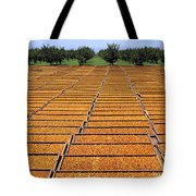 Agriculture - Blenheim Apricots Tote Bag