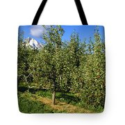 Agriculture - Bosc Pear Orchard Tote Bag