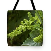 Agriculture - Cluster Of Wine Grape Tote Bag