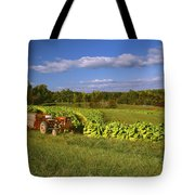Agriculture - Fields Of Maturing Flue Tote Bag by R. Hamilton Smith