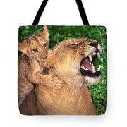 Ah Being A Mother Is Wonderful African Lions Wildlife Rescue Tote Bag