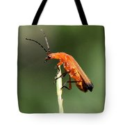 Ah - I Made It To The Top Tote Bag