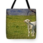 Ahhhh Spring Is Here Tote Bag