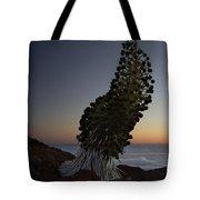 Ahinahina - Silversword - Argyroxiphium Sandwicense - Summit Haleakala Maui Hawaii Tote Bag