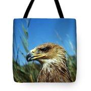 Aigle Imperial Aquila Heliaca Tote Bag