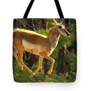 Airborn Pronghorn Tote Bag