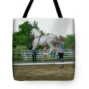 Airs Above The Ground Tote Bag