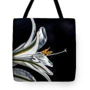 Ajo Lily Close Up Tote Bag by Robert Bales