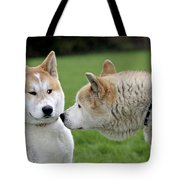 Akita Inu Dogs, Old And Young Tote Bag
