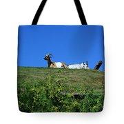 Al Johnsons Resturant Goats Tote Bag