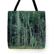 Alabama Autumn Marsh Tote Bag by Maria Urso