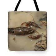 Alabama Crawdaddy Taking A Swim Tote Bag