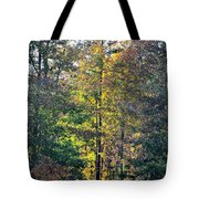 Alabama Forest In Autumn 2012 Tote Bag