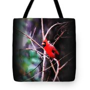 Alabama Rain - Cardinal Tote Bag