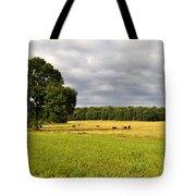 Alabama Valley Tote Bag