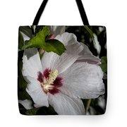 Alabama Wildflower -  Woolly Rose Mallow Tote Bag