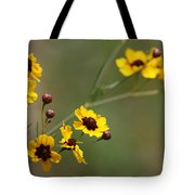 Alabama Wildflowers Coreopsis Tinctoria Tickseed Tote Bag