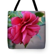 Alabama's Fading Camelia Tote Bag