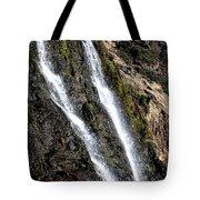 Alamere Falls Two Tote Bag