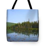 Alaska River Swamp Tote Bag