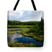 Alaskan Backyard Tote Bag