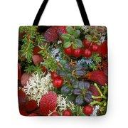 Alaskan Berries 2 Tote Bag