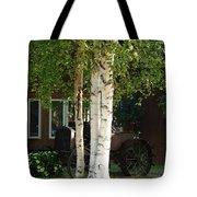 Alaskan Birch Tote Bag